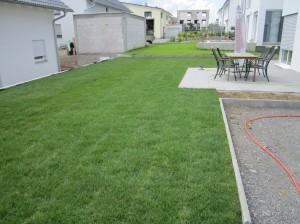 T+S Gartengestaltung 251