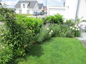 T+S Gartengestaltung 279