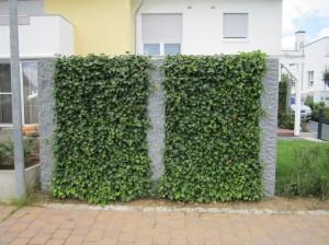 T+S Gartengestaltung 294